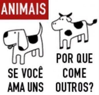 Veganismo e vegetarismo em suas diferenças
