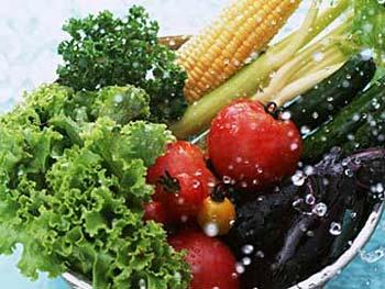 Carência de vitaminas vegetarianos
